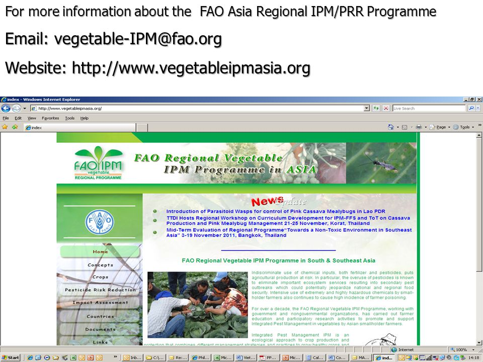Email: vegetable-IPM@fao.org Website: http://www.vegetableipmasia.org