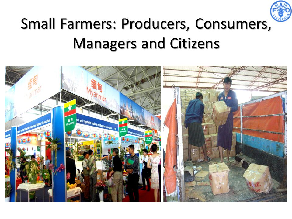 Small Farmers: Producers, Consumers, Managers and Citizens
