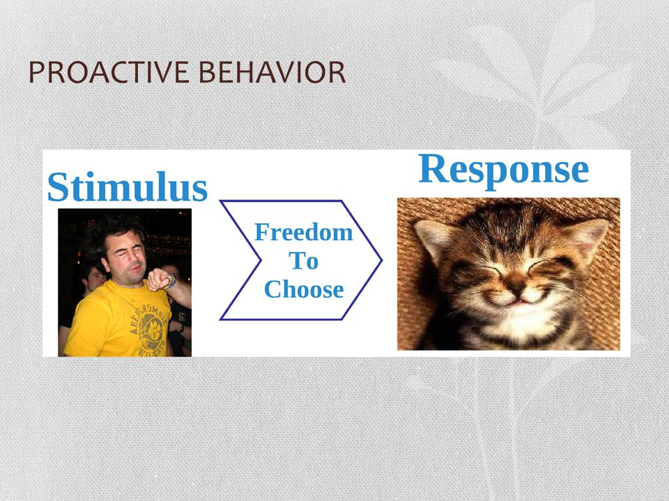 PROACTIVE BEHAVIOR Proactive people PAUSE to allow themselves the FREEDOM TO CHOOSE their response based on PRINCIPLES and DESIRED RESULTS.