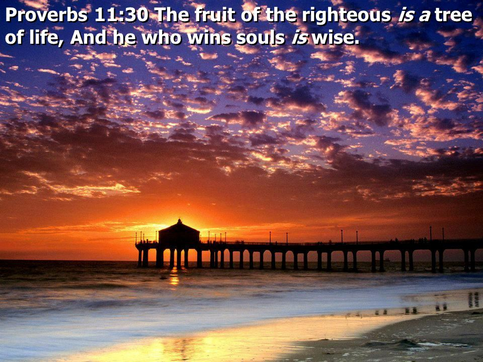 Proverbs 11:30 The fruit of the righteous is a tree of life, And he who wins souls is wise.