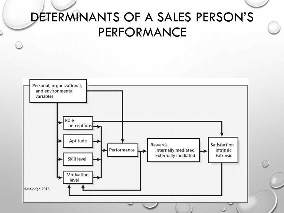 Determinants of a Sales Person's Performance