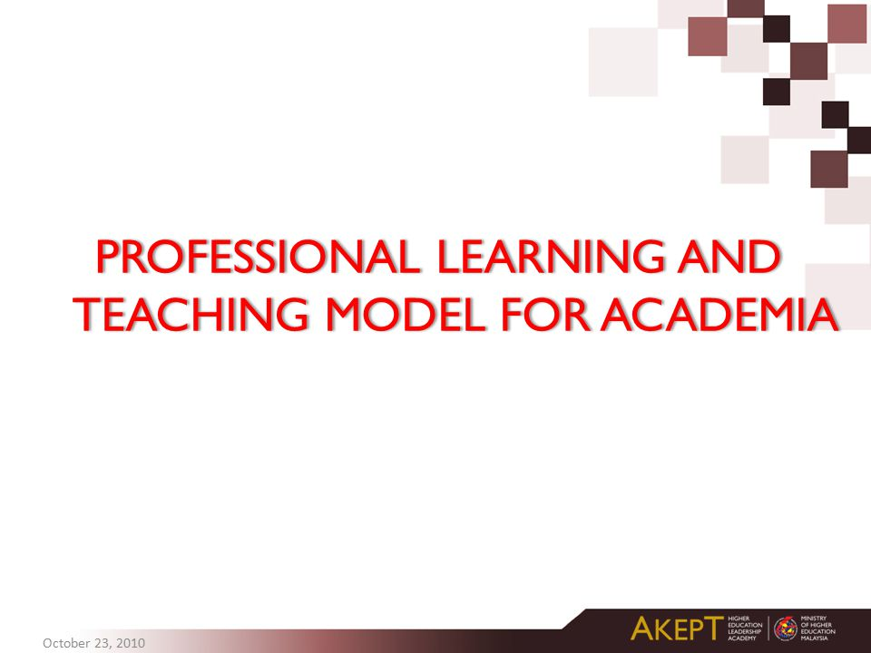 PROFESSIONAL LEARNING AND TEACHING MODEL FOR ACADEMIA