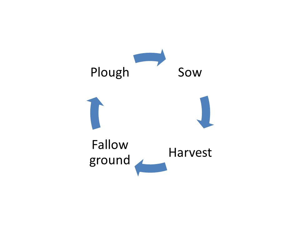 Sow Harvest Fallow ground Plough In God's timing