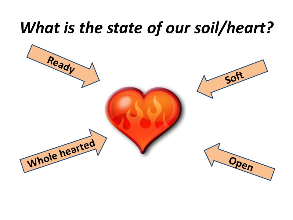 What is the state of our soil/heart