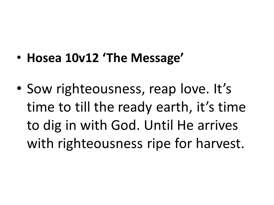 Hosea 10v12 'The Message'