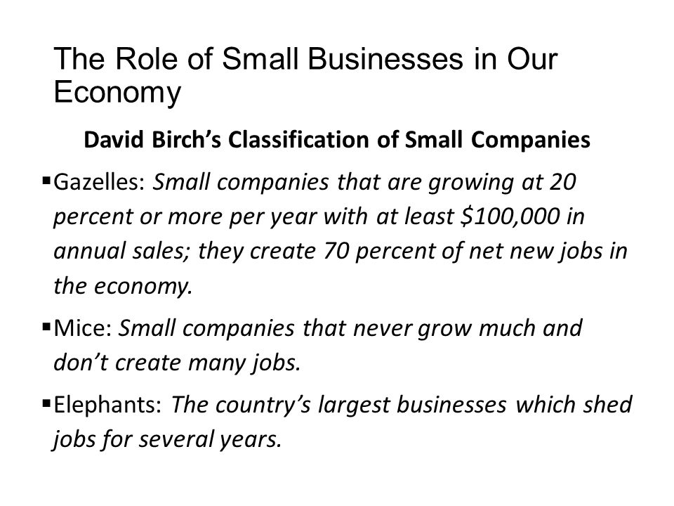 The Role of Small Businesses in Our Economy