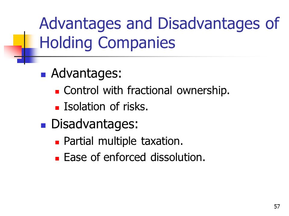 Advantages and Disadvantages of Holding Companies