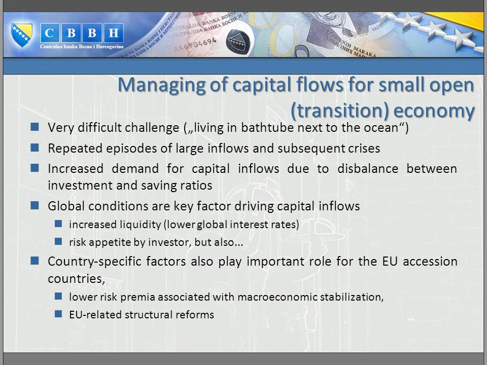 Managing of capital flows for small open (transition) economy