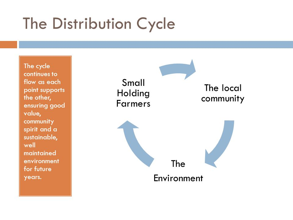 The Distribution Cycle