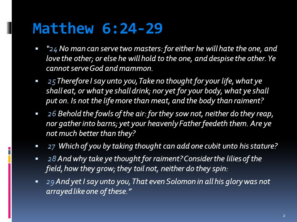 Matthew 6:24-29