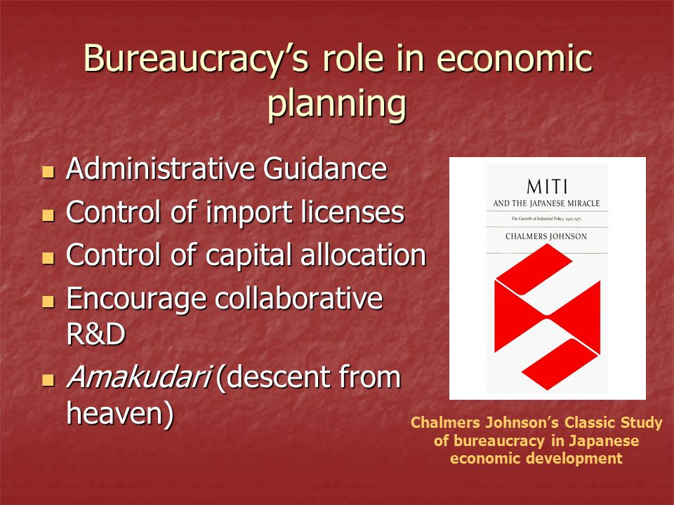 Bureaucracy's role in economic planning