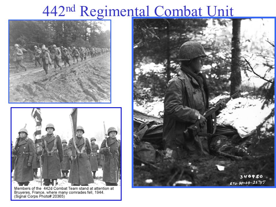 442nd Regimental Combat Unit
