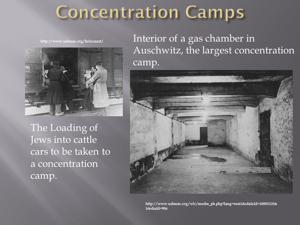Concentration Camps Interior of a gas chamber in Auschwitz, the largest concentration camp. http://www.ushmm.org/holocaust/