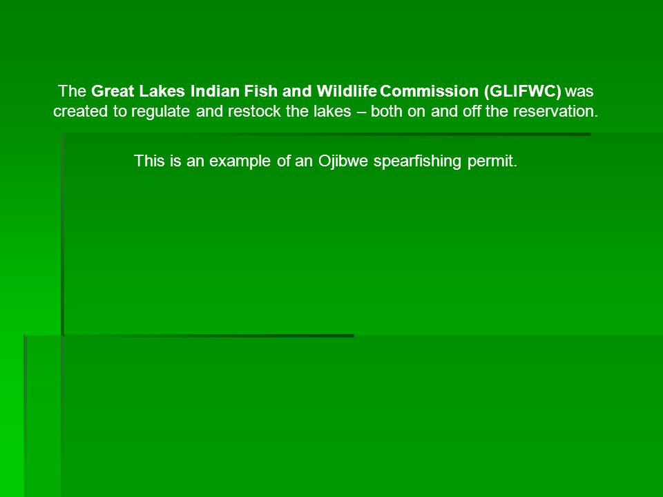 This is an example of an Ojibwe spearfishing permit.
