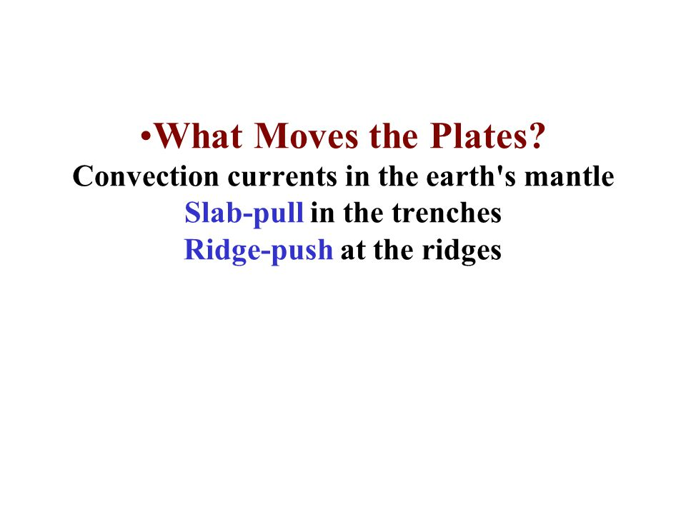 What Moves the Plates.