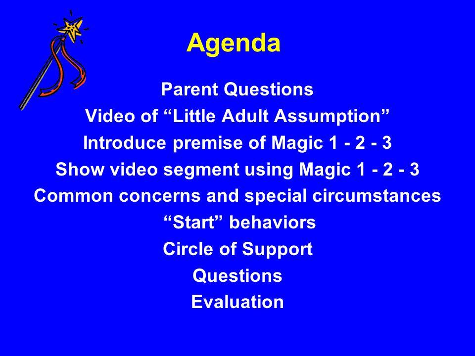 Agenda Parent Questions Video of Little Adult Assumption