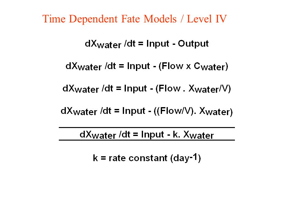 Time Dependent Fate Models / Level IV