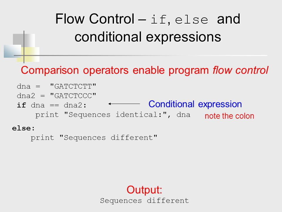Flow Control – if, else and conditional expressions