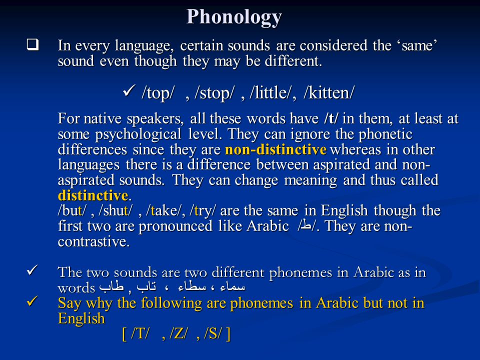 Phonology /top/ , /stop/ , /little/, /kitten/