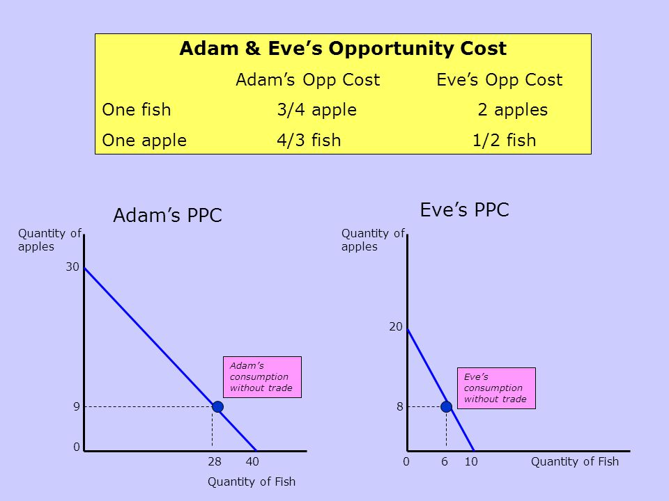 Adam & Eve's Opportunity Cost