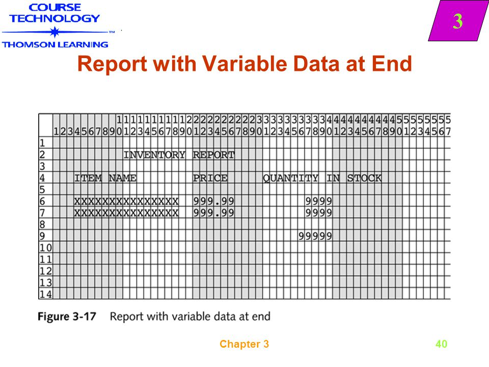 Report with Variable Data at End
