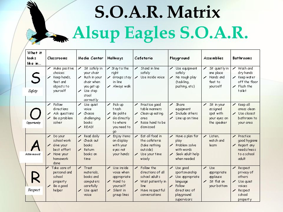 S.O.A.R. Matrix Alsup Eagles S.O.A.R.