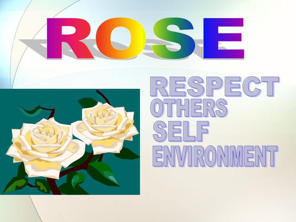 ROSE RESPECT OTHERS SELF ENVIRONMENT