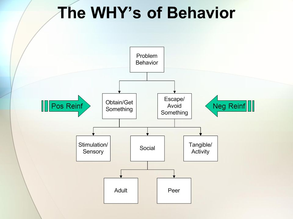 The WHY's of Behavior Pos Reinf Neg Reinf
