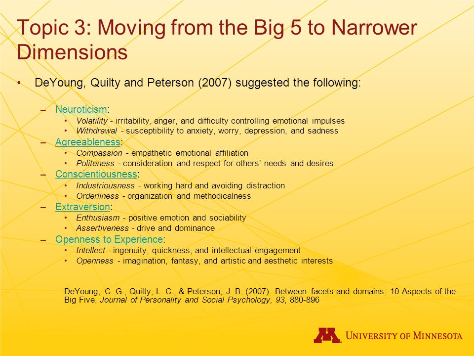 Topic 3: Moving from the Big 5 to Narrower Dimensions