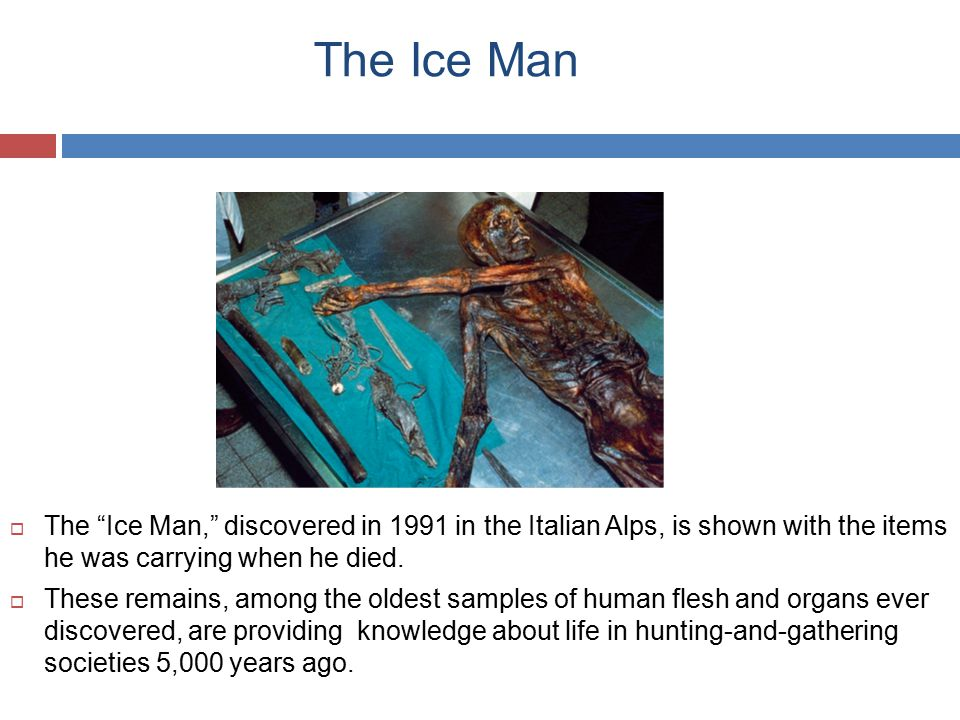 The Ice Man The Ice Man, discovered in 1991 in the Italian Alps, is shown with the items he was carrying when he died.