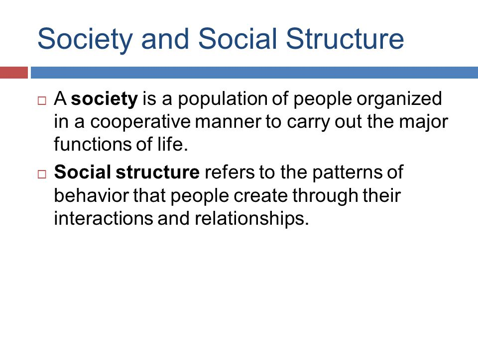 Society and Social Structure