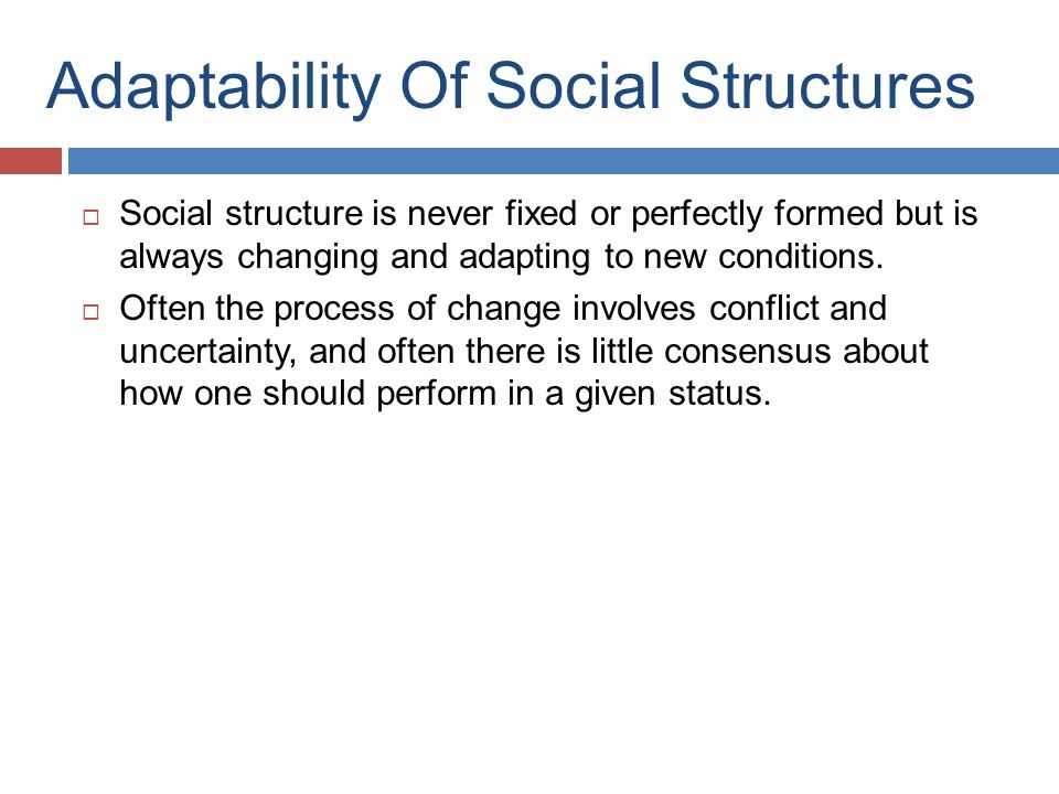 Adaptability Of Social Structures