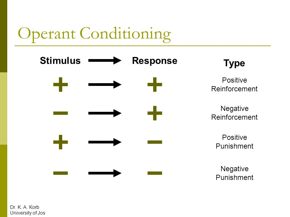 Operant Conditioning Stimulus Response Type Positive Reinforcement