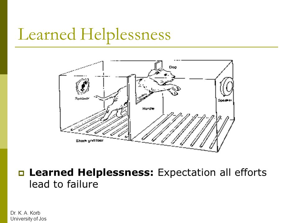 Learned Helplessness Learned Helplessness: Expectation all efforts lead to failure. Dr. K. A. Korb.