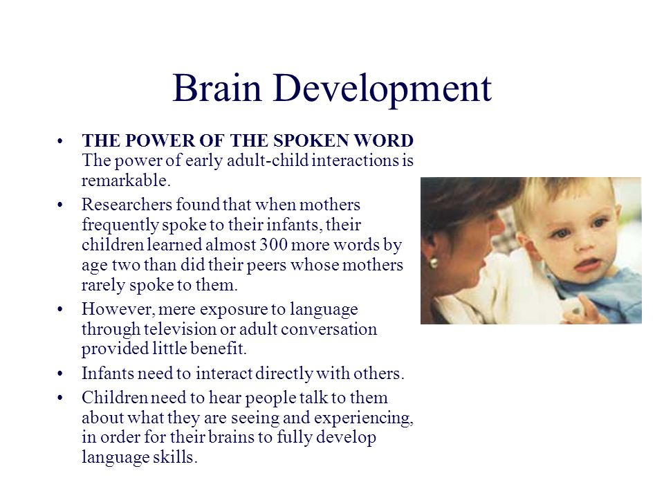 Brain Development THE POWER OF THE SPOKEN WORD The power of early adult-child interactions is remarkable.