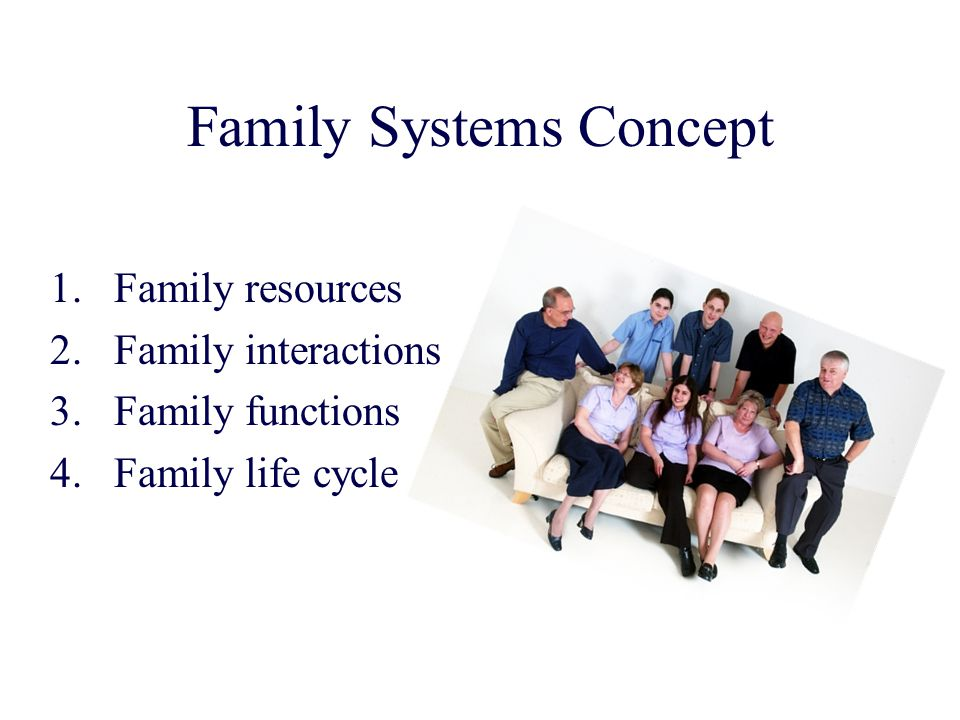 Family Systems Concept
