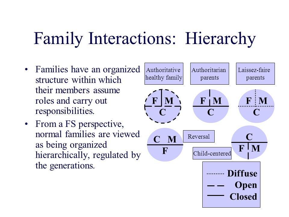 Family Interactions: Hierarchy