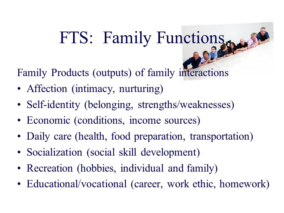 FTS: Family Functions Family Products (outputs) of family interactions