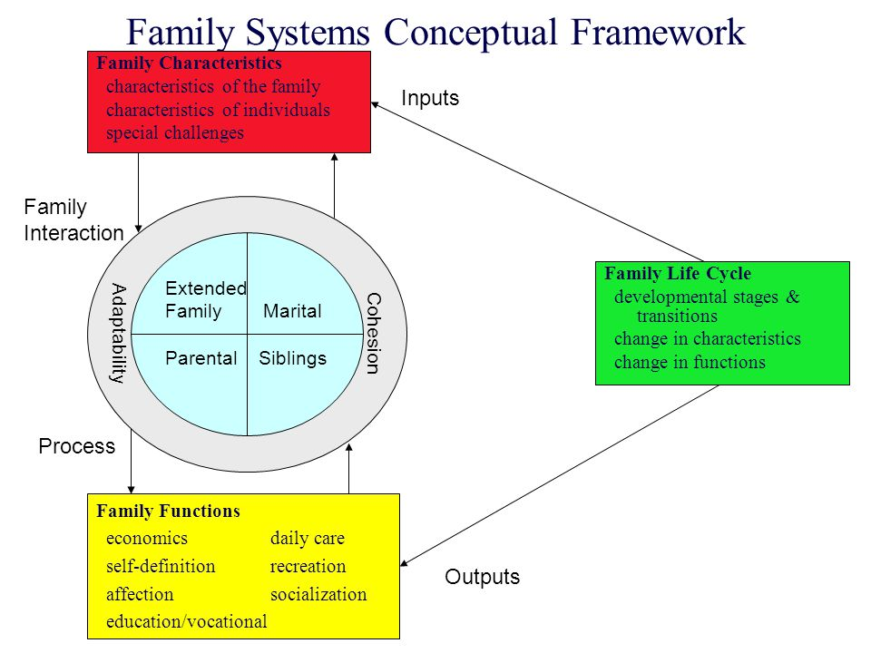 Family Systems Conceptual Framework