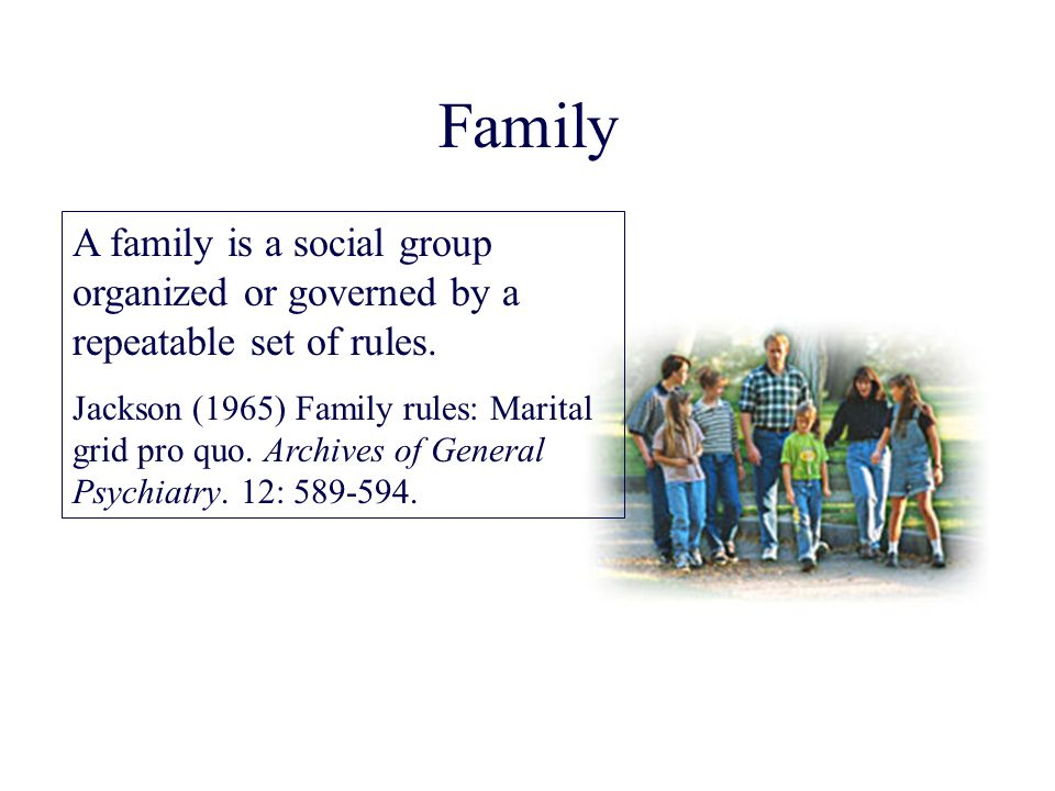 Family A family is a social group organized or governed by a repeatable set of rules.