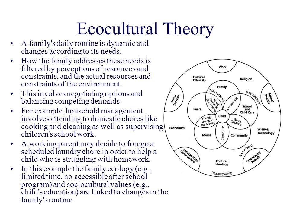 Ecocultural Theory A family s daily routine is dynamic and changes according to its needs.