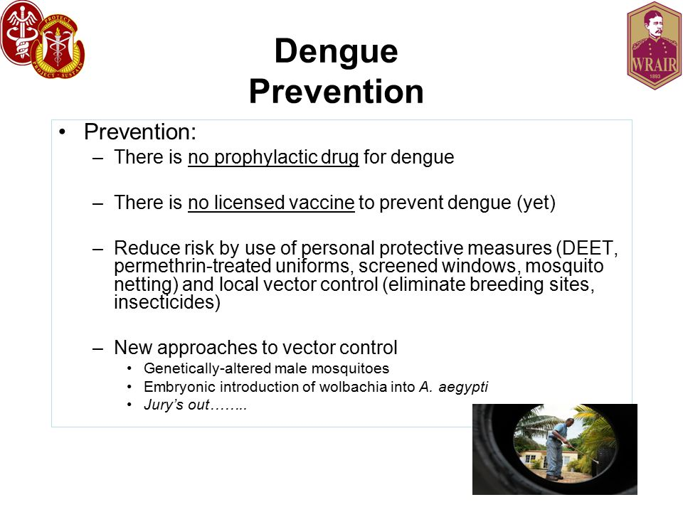 Dengue Prevention Prevention: There is no prophylactic drug for dengue