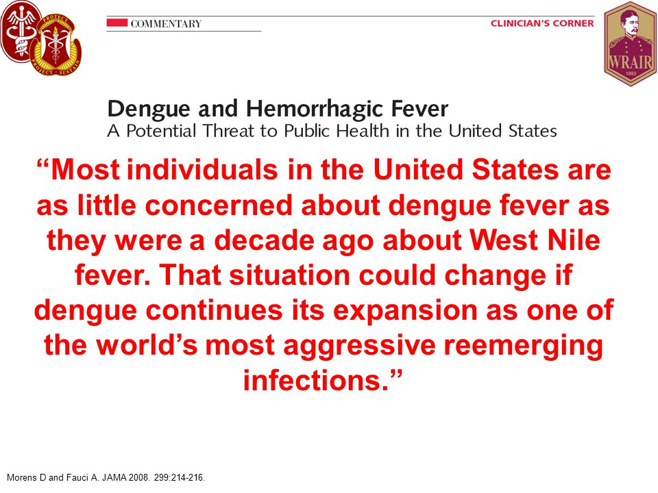 Widespread dengue a real possibility