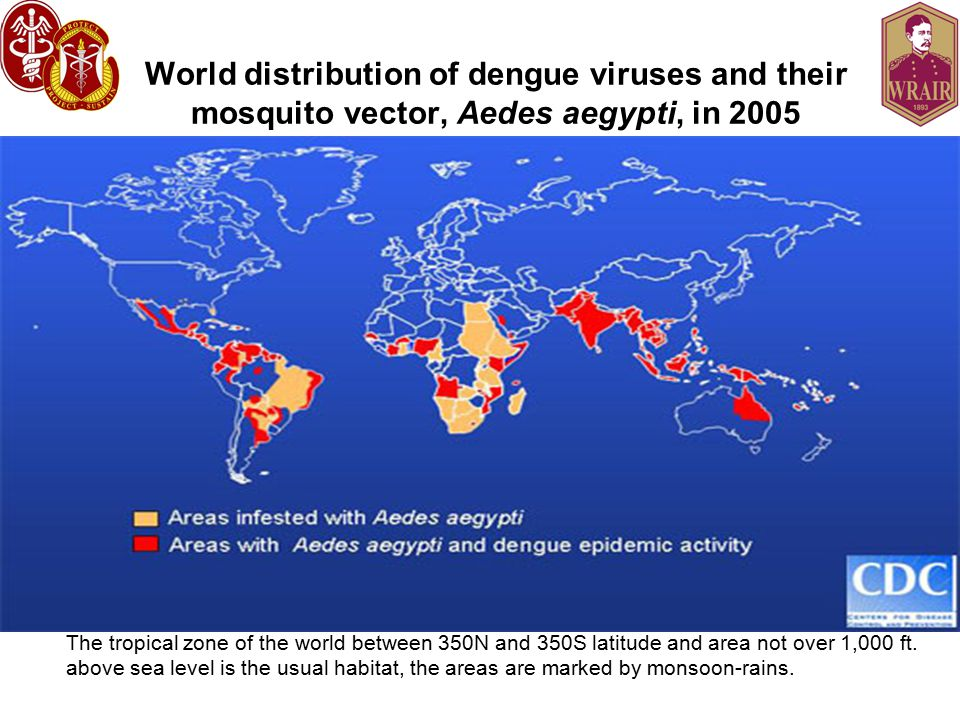 World distribution of dengue viruses and their mosquito vector, Aedes aegypti, in 2005