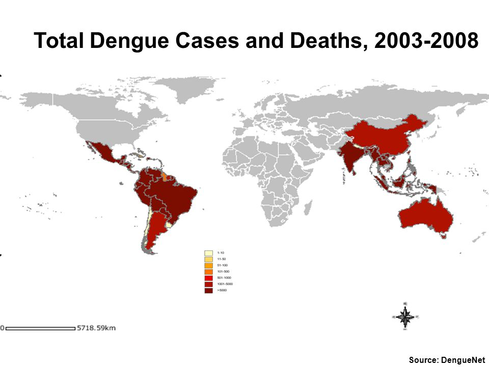 Total Dengue Cases and Deaths, 2003-2008