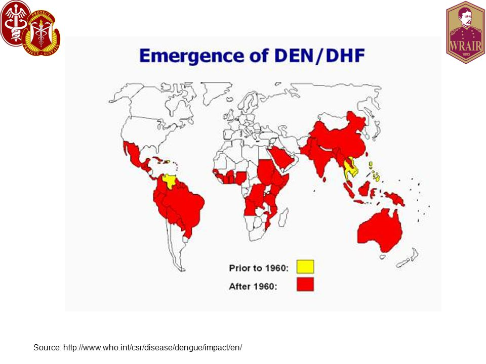 Source: http://www.who.int/csr/disease/dengue/impact/en/