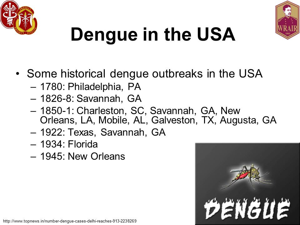 Dengue in the USA Some historical dengue outbreaks in the USA