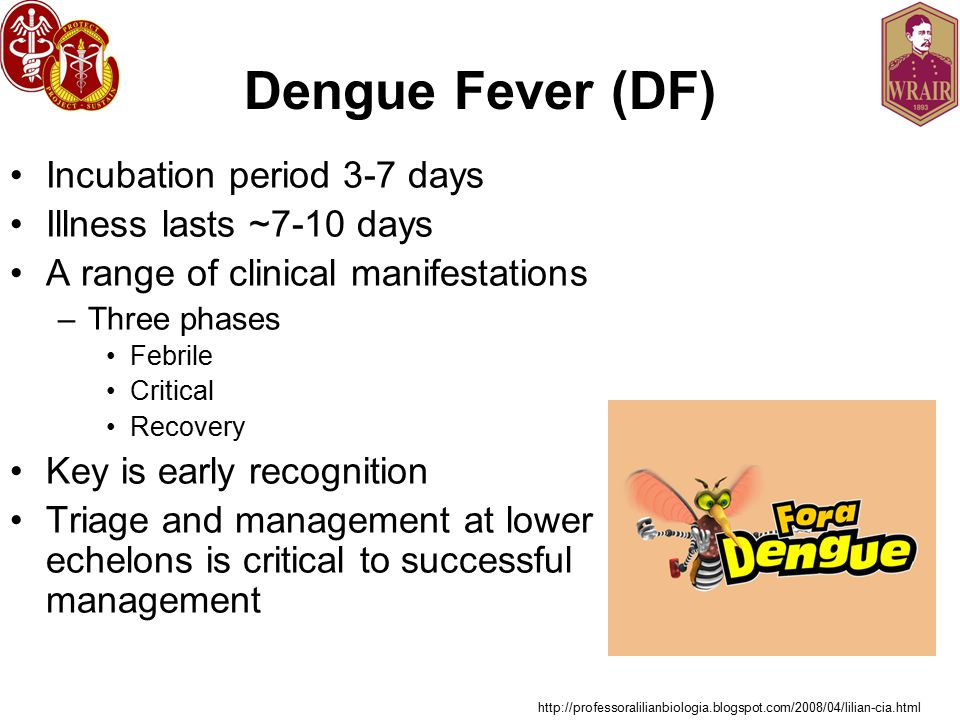 Dengue Fever (DF) Incubation period 3-7 days Illness lasts ~7-10 days