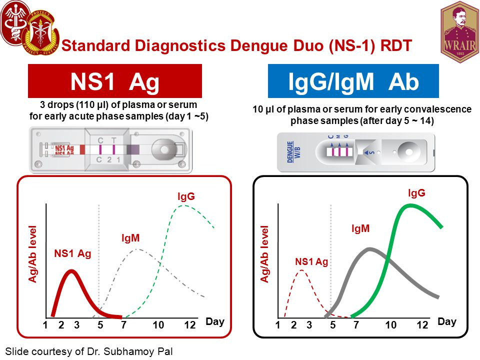 Standard Diagnostics Dengue Duo (NS-1) RDT