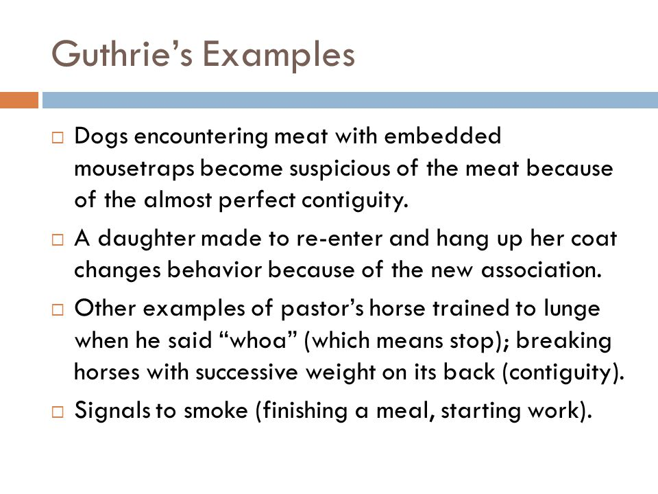 Guthrie's Examples Dogs encountering meat with embedded mousetraps become suspicious of the meat because of the almost perfect contiguity.
